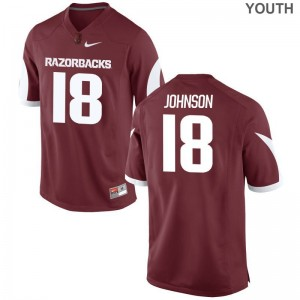 Blake Johnson Youth Jerseys Youth Large Arkansas Razorbacks Limited - Cardinal