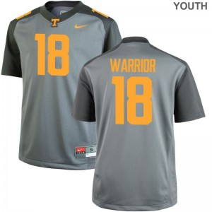 Nigel Warrior Tennessee Volunteers Jerseys Youth X Large For Kids Gray Limited